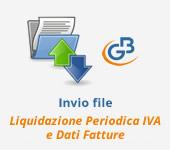 Console Telematica: invio file Dati fatture e Liquidazione Periodica Iva