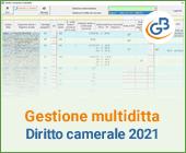 Gestione multiditta: diritto camerale 2021